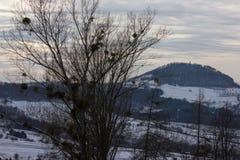 paisaje del invierno con las nubes del viento tempestuoso de Europa del este Rus Foto de archivo