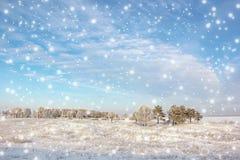 Paisaje del invierno con los árboles y la nieve que cae Fotos de archivo