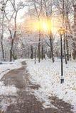 Paisaje del invierno con los bancos en el callejón del parque Foto de archivo