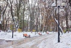 Paisaje del invierno con los bancos en el callejón del parque Imagen de archivo libre de regalías