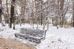 Paisaje del invierno con los bancos en el callejón del parque Imagen de archivo