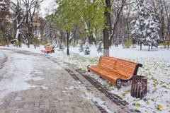 Paisaje del invierno con los bancos en el callejón del parque Imágenes de archivo libres de regalías