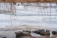 Paisaje del invierno con los pescadores en el río Foto de archivo
