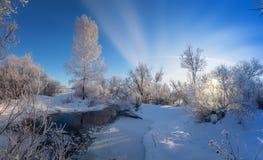 Paisaje del invierno con los árboles en la helada cerca de la corriente, Rusia Foto de archivo libre de regalías