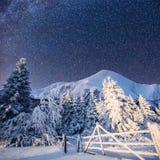 Paisaje del invierno con nieve en las montañas Cárpatos, Ucrania Cielo estrellado Foto de archivo