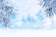 Paisaje del invierno con nieve Fondo de la Navidad con la ramificación del abeto fotos de archivo