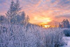 Paisaje del invierno con puesta del sol Imágenes de archivo libres de regalías