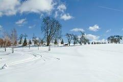 Paisaje del invierno con un trineo distante Fotografía de archivo