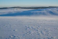 Paisaje del invierno Día asoleado Disminución del invierno Los colores brillantes Paisaje simple Camino forestal del bosque del i Foto de archivo