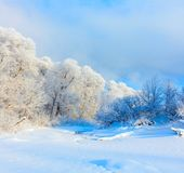 Paisaje del invierno Día frío imagen de archivo