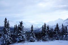 Paisaje del invierno de Alaska Imagen de archivo libre de regalías