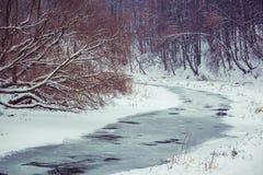 Paisaje del invierno de campos nevados fotos de archivo