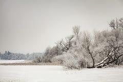 Paisaje del invierno de Finja del lago Fotografía de archivo