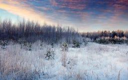 Paisaje del invierno de la belleza por mañana Fotos de archivo libres de regalías