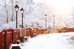 Paisaje del invierno de la mañana Imágenes de archivo libres de regalías