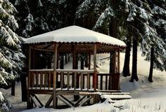 Paisaje del invierno de la montaña Foto de archivo libre de regalías
