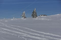 Paisaje del invierno de la monta?a de Vitosha, Sofia City Region, Bulgaria imagen de archivo