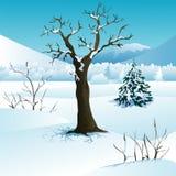 Paisaje del invierno de la Navidad Imagenes de archivo