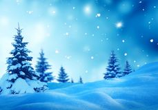 Paisaje del invierno de la Navidad con el árbol de abeto Foto de archivo