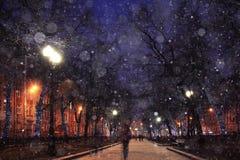 Paisaje del invierno de la noche Fotografía de archivo libre de regalías