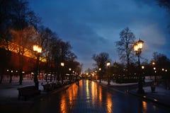 Paisaje del invierno de la noche en el callejón del parque de la ciudad Imágenes de archivo libres de regalías
