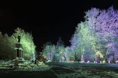 Paisaje del invierno de la noche en la ciudad Imagen de archivo