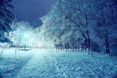 Paisaje del invierno de la noche en parque de la ciudad Foto de archivo libre de regalías