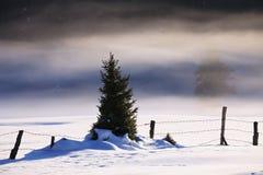 Paisaje del invierno de la persona chapada a la antigua Fotografía de archivo libre de regalías