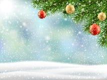 Paisaje del invierno de la rama de árbol de navidad fotografía de archivo