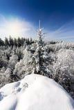 Paisaje del invierno de la visión superior Fotos de archivo libres de regalías