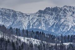Paisaje del invierno de las montañas de Bucegi Foto de archivo libre de regalías