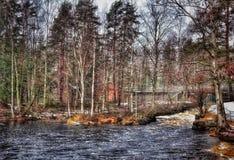 Paisaje del invierno de las nevadas del abedul de los árboles del río al aire libre Imagenes de archivo