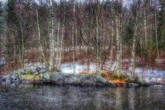 Paisaje del invierno de las nevadas del abedul de los árboles del río al aire libre Foto de archivo libre de regalías