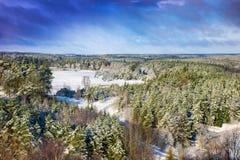 Paisaje del invierno de los árboles cubiertos con nieve Fotos de archivo libres de regalías