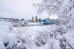 Paisaje del invierno de Portland Oregon foto de archivo libre de regalías