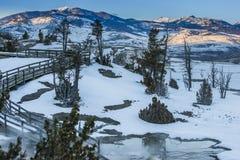 Paisaje del invierno de Yellowstone Imágenes de archivo libres de regalías