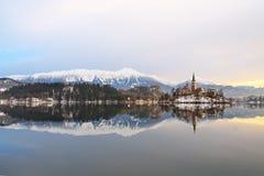 Paisaje del invierno del lago Bled Imagen de archivo libre de regalías