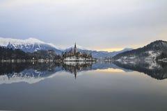 Paisaje del invierno del lago Bled Foto de archivo libre de regalías