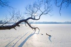 Paisaje del invierno del lago congelado Imágenes de archivo libres de regalías