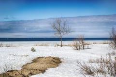 Paisaje del invierno del mar blanco Imagenes de archivo