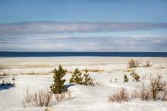 Paisaje del invierno del mar blanco Fotografía de archivo