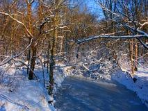 Paisaje del invierno del parque de Allerton Fotografía de archivo