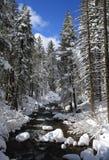 Paisaje del invierno del río de la montaña Imagen de archivo