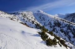 Paisaje del invierno del valle de Gasienicowa, Polonia Foto de archivo libre de regalías