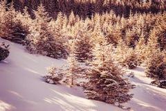 Paisaje del invierno del vintage Imagen de archivo