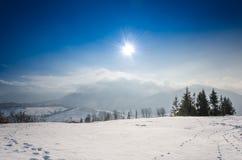 Paisaje del invierno, el sol sobre el prado nevado, SP verde Fotos de archivo
