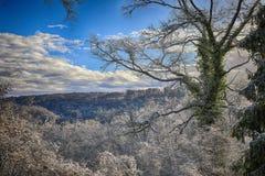 Paisaje del invierno en Ardennes foto de archivo