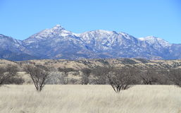 Paisaje del invierno en Arizona meridional - Santa Rita Mountains fotografía de archivo