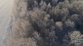 Paisaje del invierno en campo almacen de metraje de vídeo