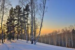 Paisaje del invierno en el bosque en la puesta del sol Foto de archivo libre de regalías